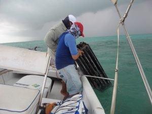 Lobster-Traps-Belize